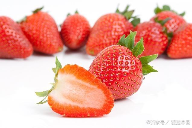 又到组团摘草莓的季节了,采摘草莓有技巧,最全草莓采摘攻略