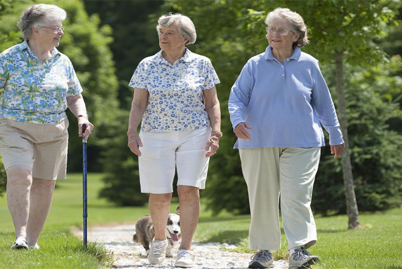 """走路可以""""走""""掉病?每天坚持走路半小时,身体的变化或让人意外"""