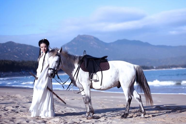 金庸小说白马啸西风中的三位大美女,如果让你选你会选择娶哪位?