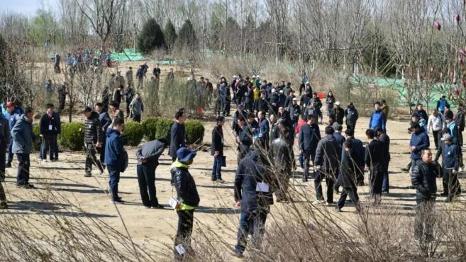 """多图直击!181名部级领导在北京朝阳""""挥汗如雨"""""""