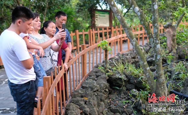 民宿正成为海南乡村旅游发展正新标配