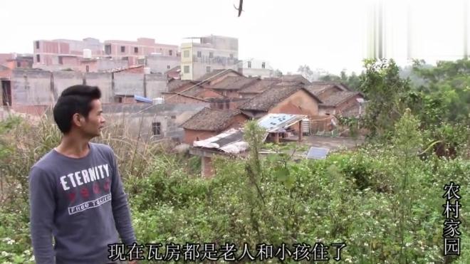 农村家园的家乡还有好多老房子,都是瓦盖的