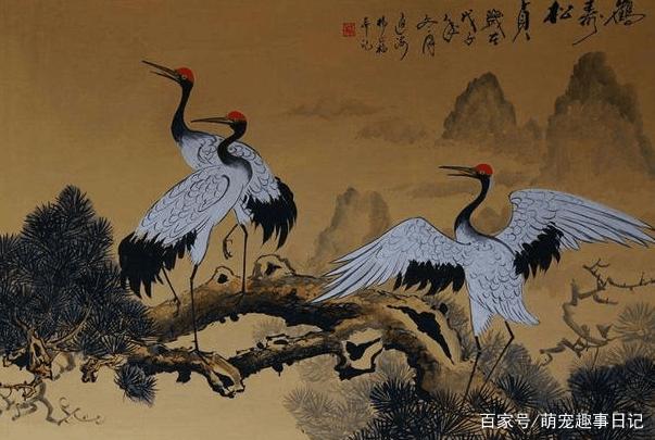 心理学:你觉得哪幅丹顶鹤画最有仙气?测你未来十年的