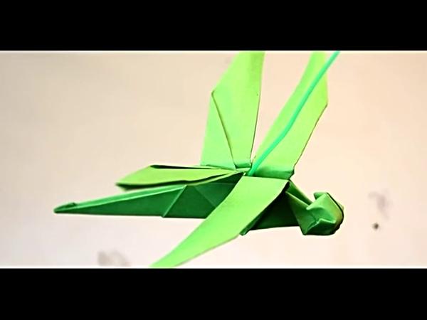 07:29 昆虫折纸蜻蜓,学习立体折纸蜻蜓的方法 05:22 美丽的天鹅折纸