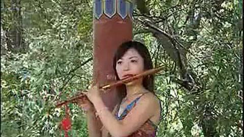 《月光下的凤尾竹》,一个字好听 00:18 葫芦丝《军中绿花》慢慢的旋律