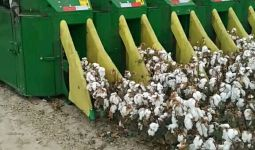 头一次见用机器摘棉花