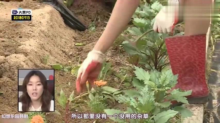 韩惠珍最擅长走台步和拍照 妈妈怼:靠走路能吃饱饭真是幸运