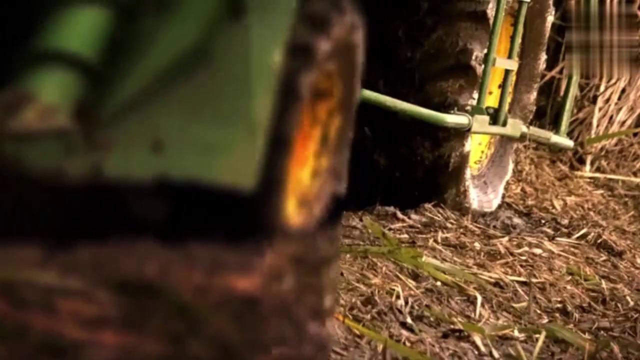 原来甘蔗也有收割机呀?涨见识了,小编一直是看中哪颗就提刀砍的