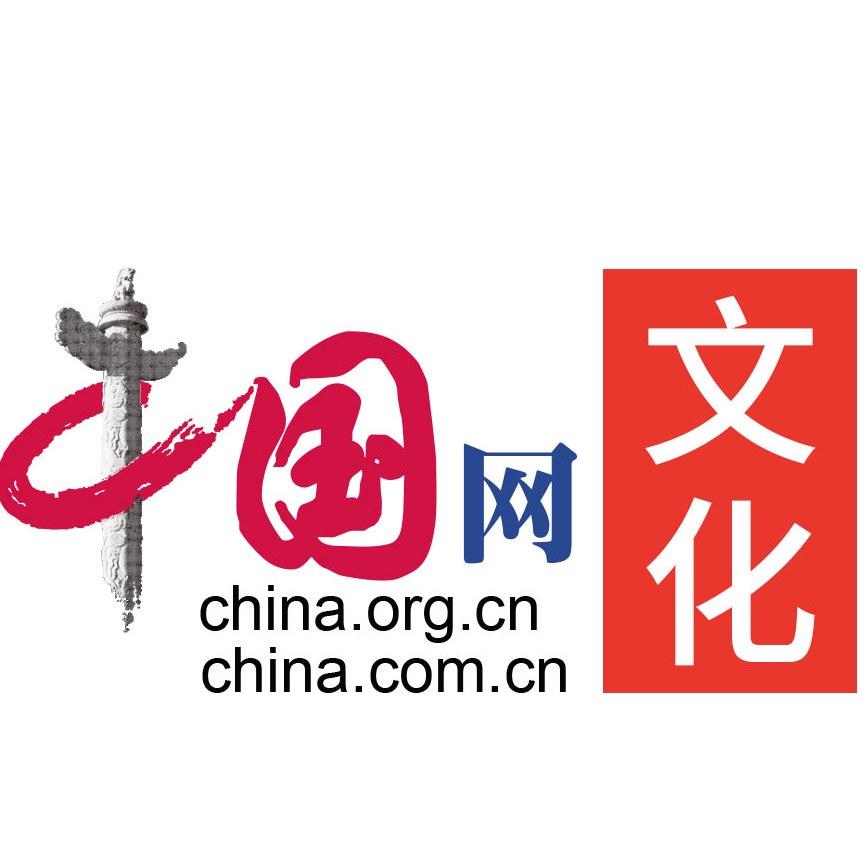 中国网文化