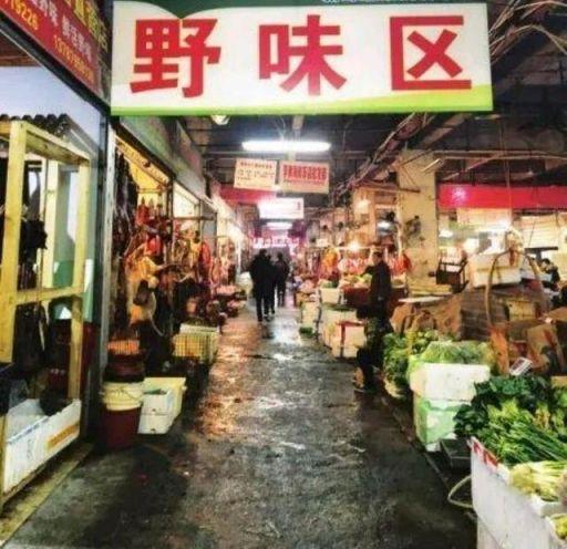 """武汉疫情另一面:全国还有多少个""""华南海鲜批发市场""""?"""