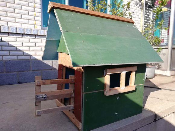 """网友给土狗造的""""别墅"""",它在里边住的还不错,汪:窗户太小!"""