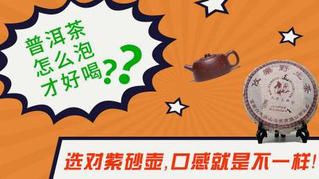 普洱茶怎么泡才好喝?选对紫砂壶,口感就是不一样!