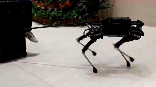 现代科技已经这样了?见识下黑科技机器狗,看完实在太佩服了