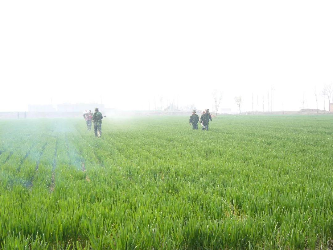改革开放前的农业情况 改革开放前的农业图片