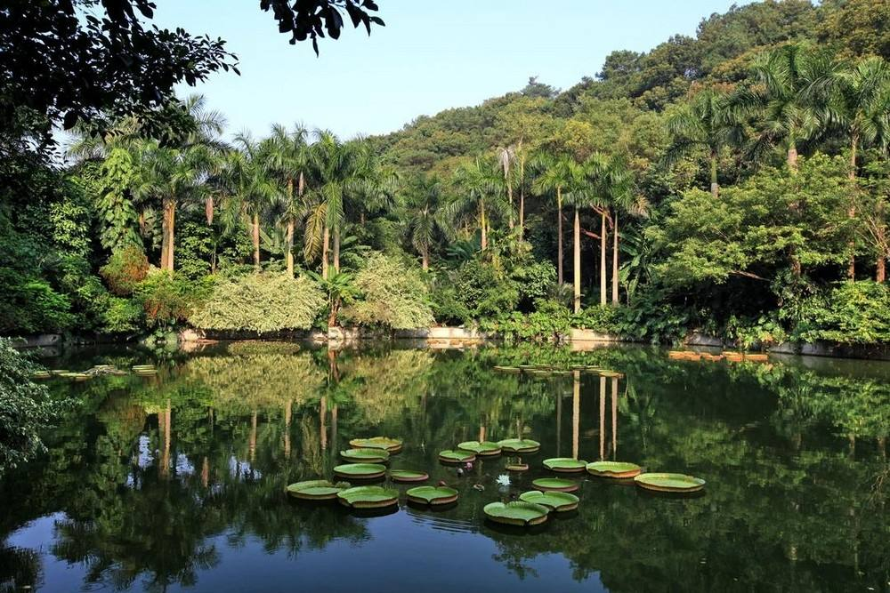 广西旅游最值得去的12个地方,你去过几个
