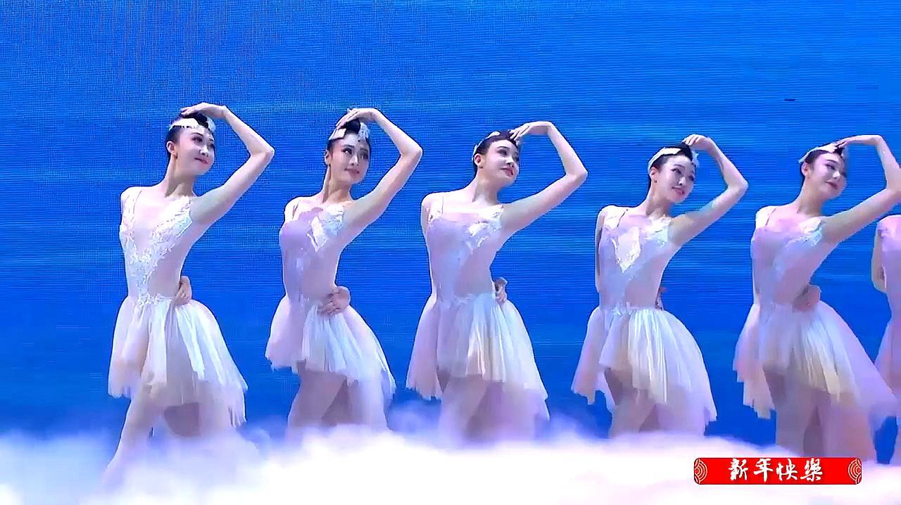 上海歌舞团舞蹈优雅的舞姿《朱鹮》,向观众细腻地讲述了一个故事