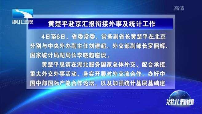 黄楚平赴京汇报衔接外事及统计工作(湖北台)