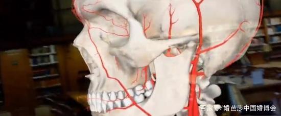 Medivis推出医疗教学AR平台AnatomyX 支持20人同时交互 AR资讯