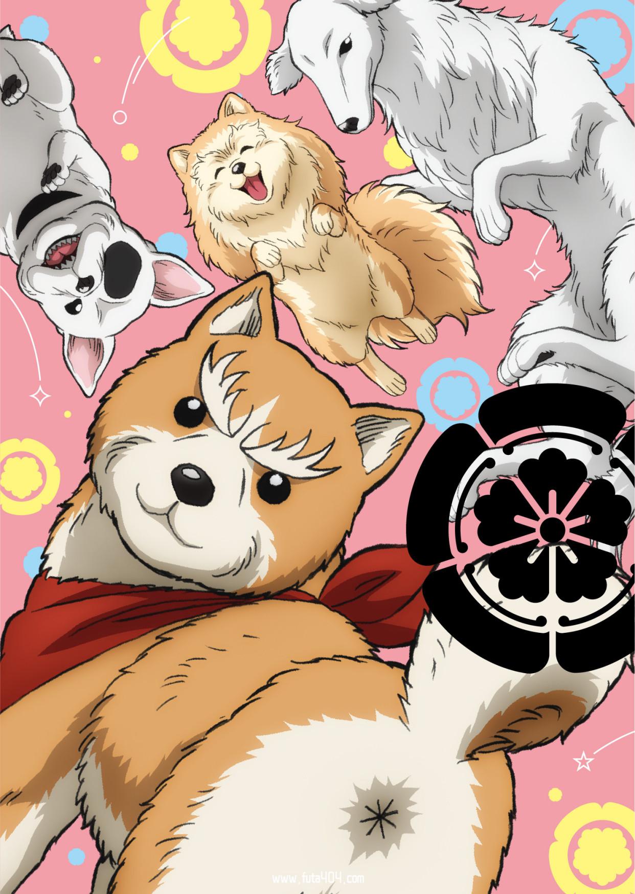 织田肉桂信长 动画在线 1月新番 动漫在线