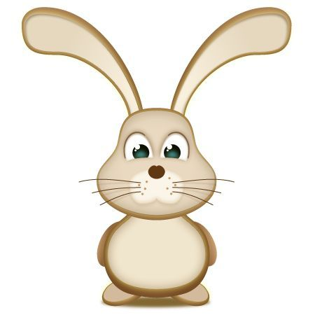 旅行中的兔子
