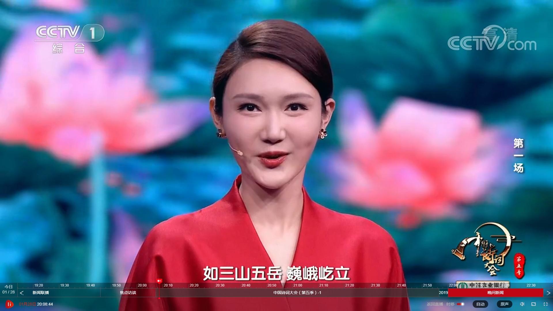 中国诗词大会第五季,董卿不再主持,新主持人青春靓丽、颜值高