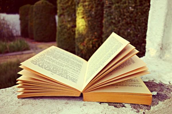 小学生含羞草观察日记随笔大全200字5篇_含羞草日记300字小学五年级