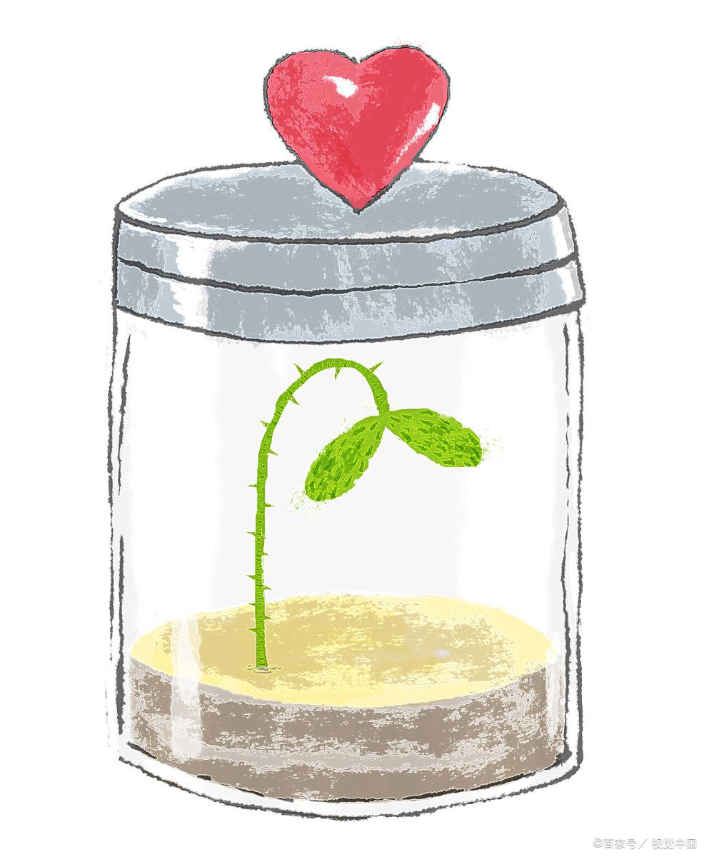 高中生談戀愛是否正確?家長應深入挖掘孩子背后的情感需求