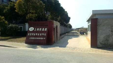 上海新晶盛生态农业合作社