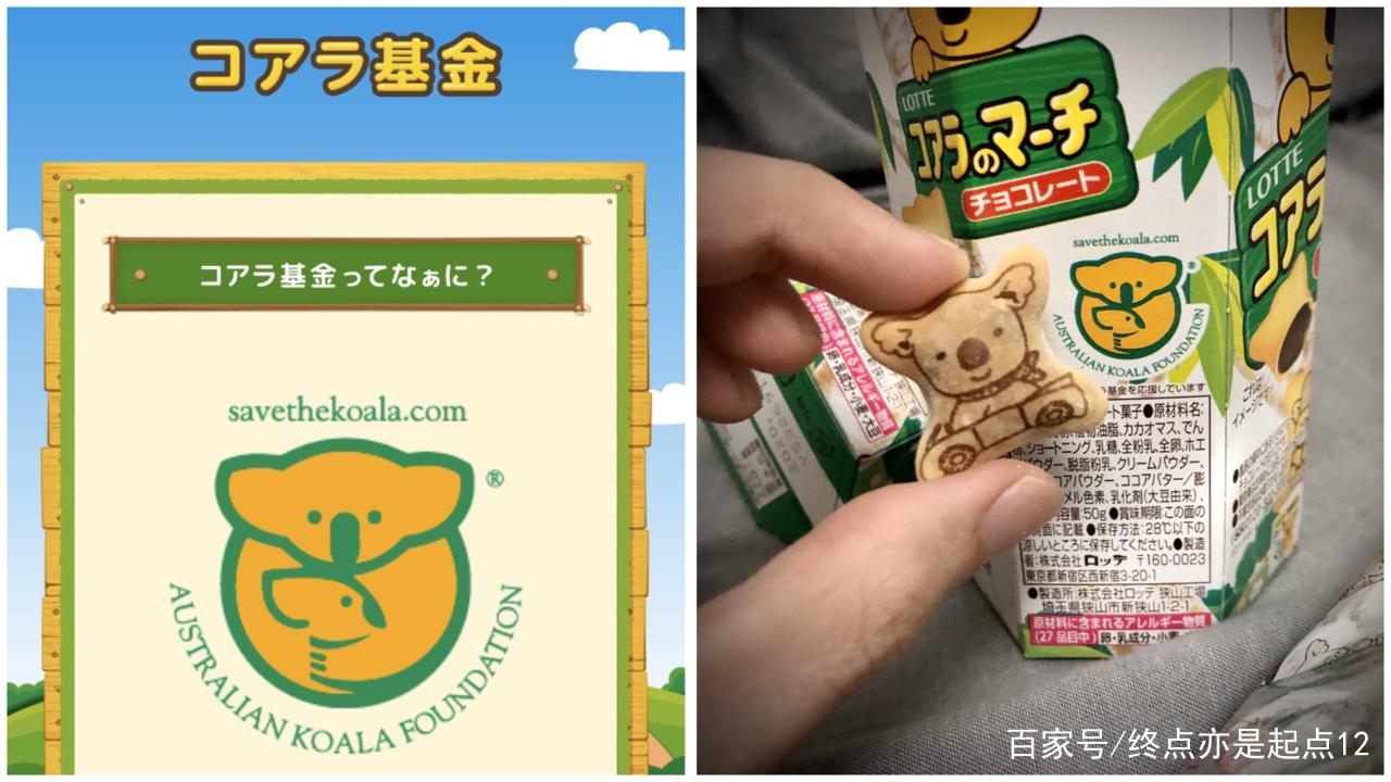 澳洲野火肆虐数月 网友:买饼干也能拯救无尾熊