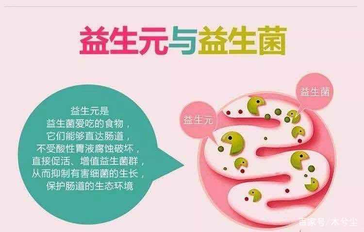 宝妈奶爸必知:益生菌和益生元有什么区别?
