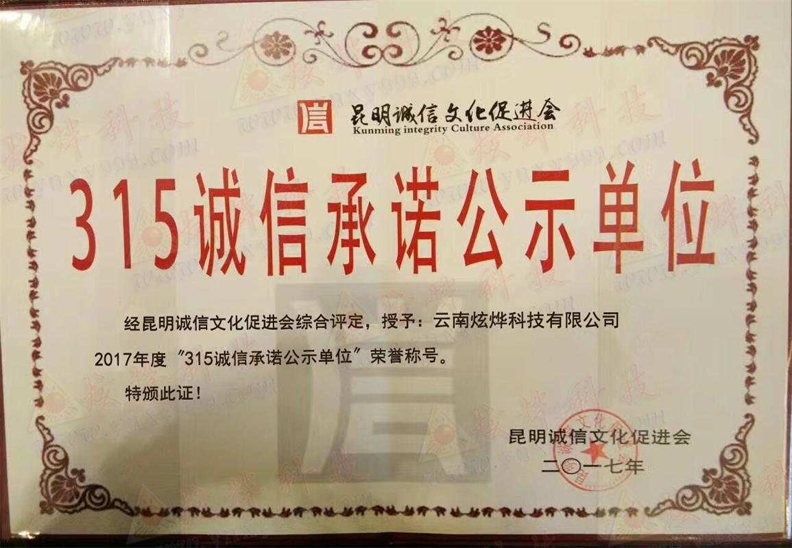 云南网站建设-企业荣誉315-1.jpg