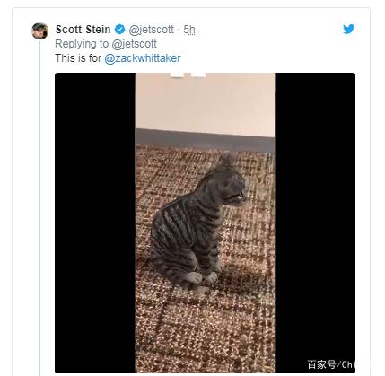 """谷歌搜索现已加入AR技术 用户可以""""招出""""动物 AR资讯 第6张"""