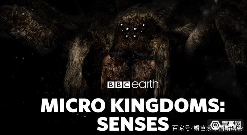 VR/AR一周大事件第五期:《精灵宝可梦:GO》下载超10亿次 AR资讯 第21张