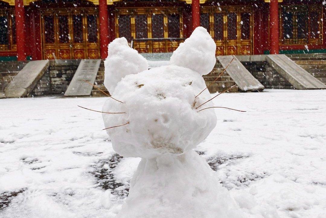 """张若昀堆""""范闲""""雪人,邓伦堆""""御猫""""雪人,岳云鹏的雪人最形象"""