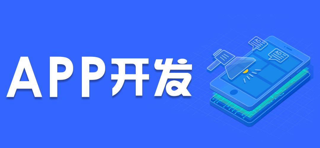 企业级APP开发
