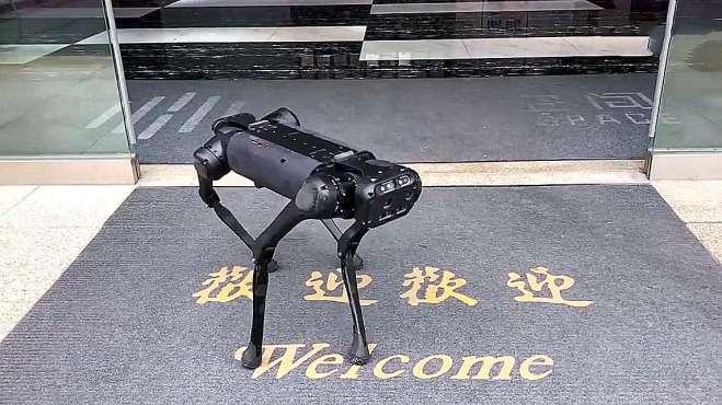 中国机器狗和美国机器狗,哪个技术更先进?对比一下就知道了!