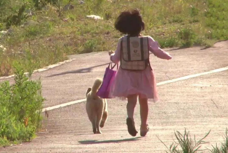 同命相连的小女孩和流浪狗,因为偶然相遇,让彼此都有了新的开始