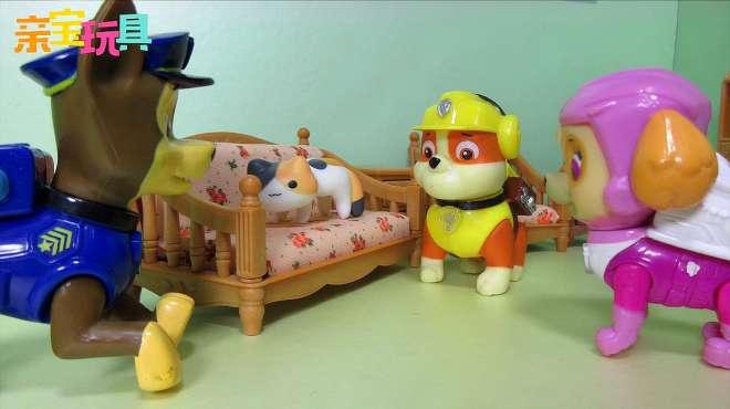 亲宝玩具学汉字:猫的拼音怎么读写 小莉和天天带你学拼音识汉字