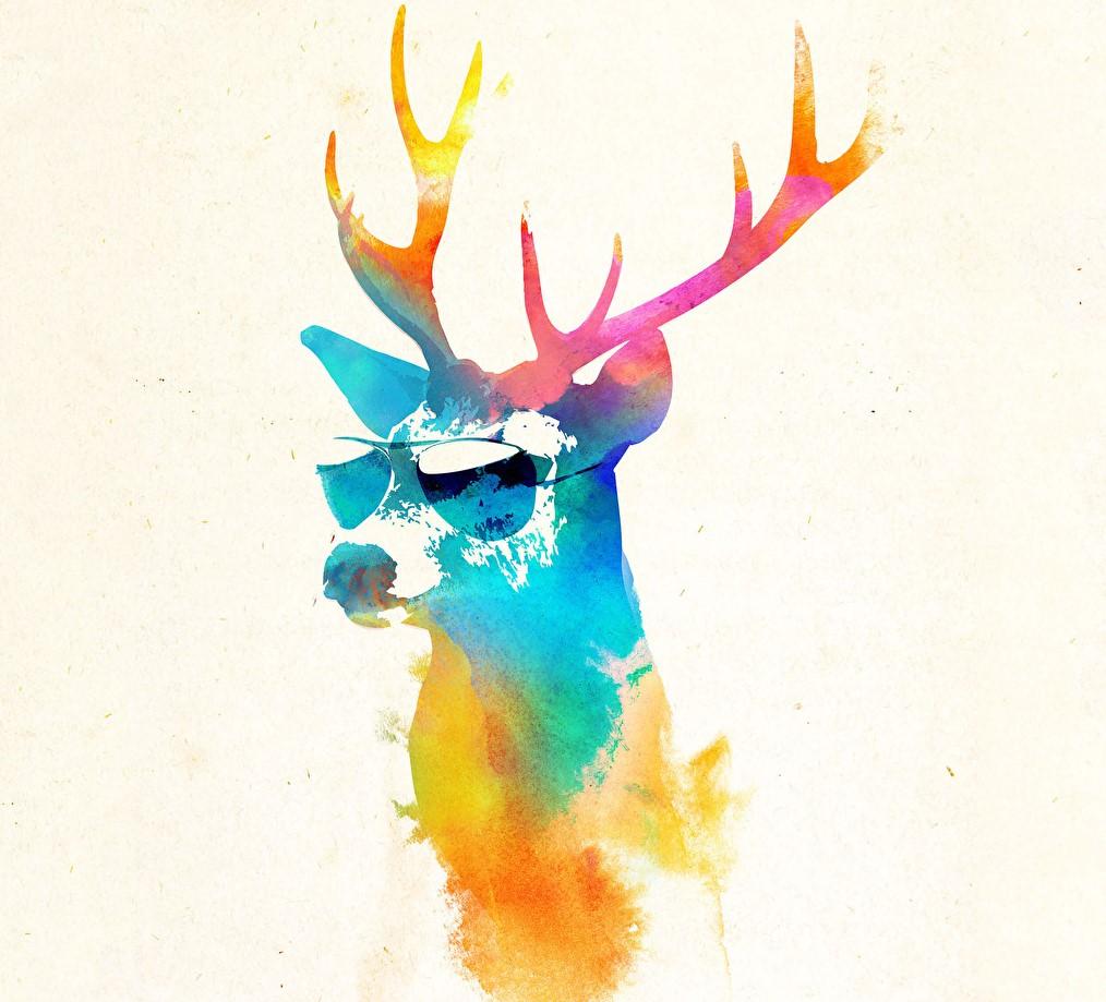 Deershun