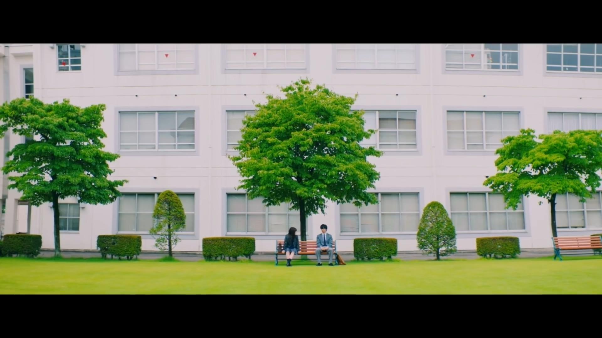 佐藤大树 桥本环奈主演《小说之神》真人电影预告公开! 佐藤大树 ACG资讯