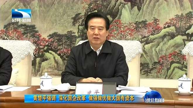 湖北副省长黄楚平强调,深化国企改革,做强做优国有资本