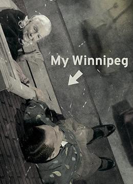 我的温尼伯