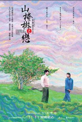 电影《山楂树之恋》百度云网盘资源高清在线完整版插图