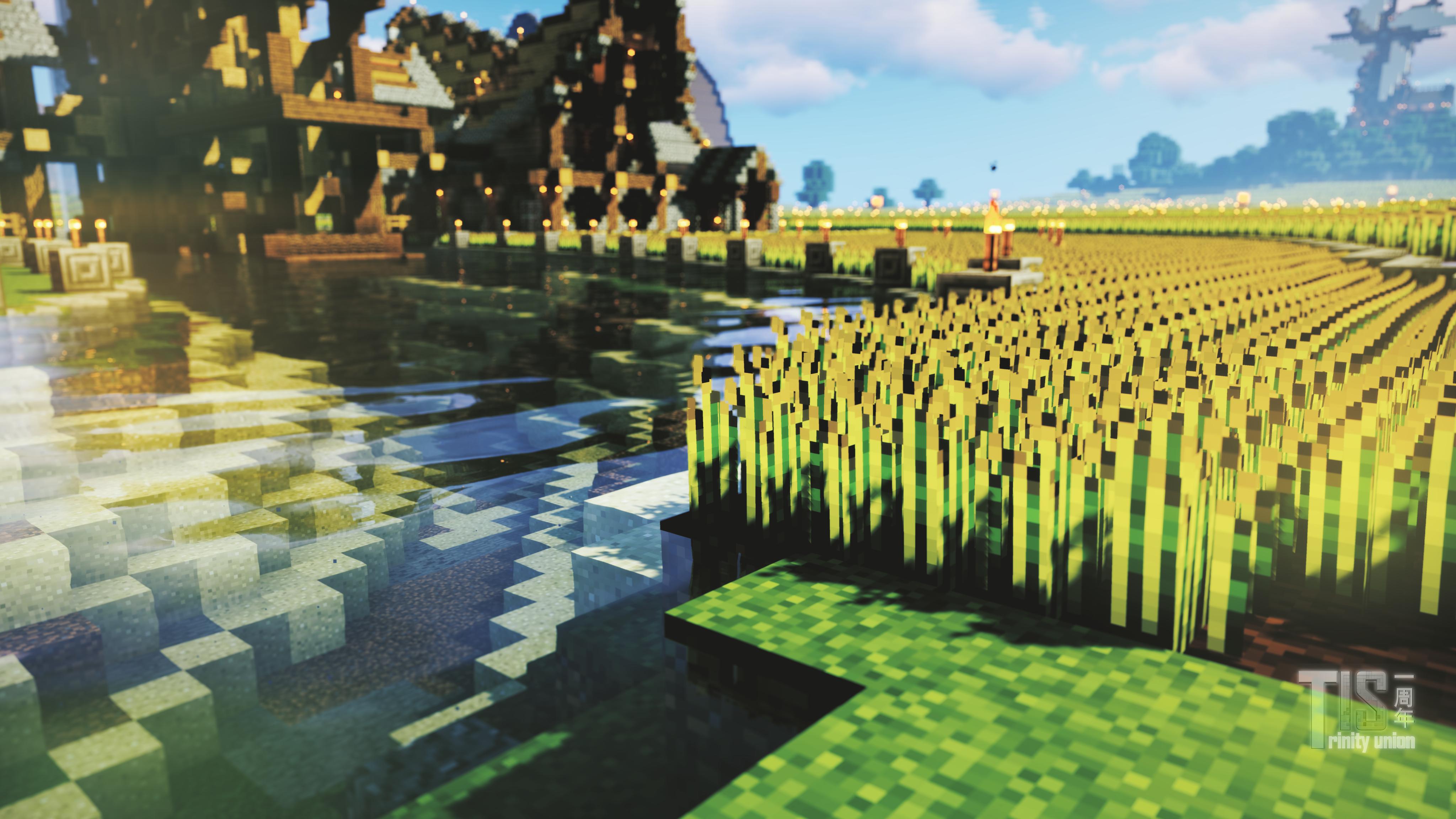 绿野镇观赏农田