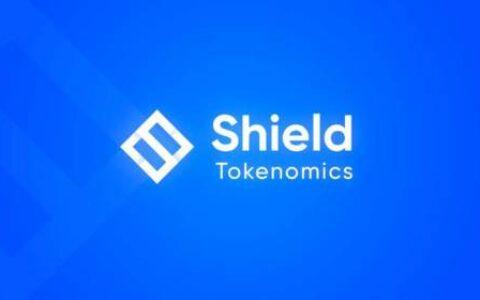 从非合作博弈理解 DeFi 衍生品协议 Shield 治理与代币机制