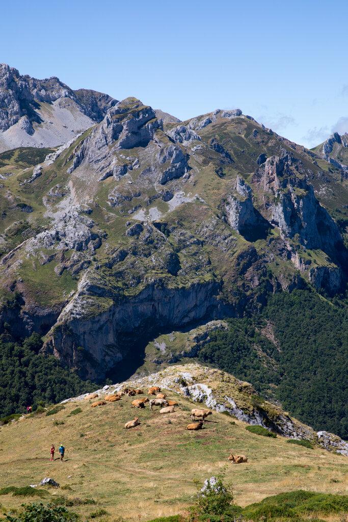 索米多自然公园的特色景观。
