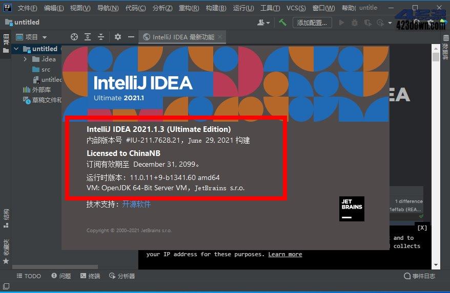 IntelliJ IDEA2021中文旗舰版