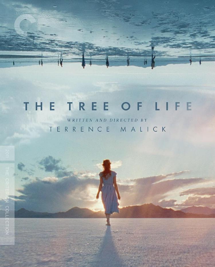 《生命之树》(Tree of Life)电影影评—— 设问恢宏,独特优美