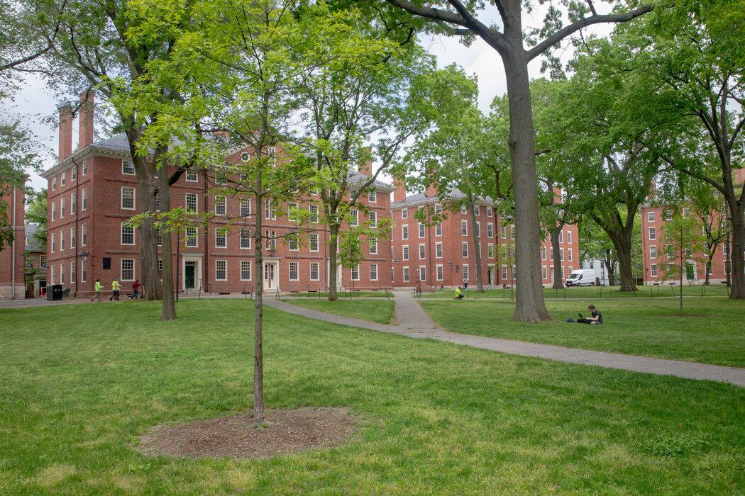 在哈佛大学这样由于疫情而在网上授课的地方,特朗普威胁要遣返国际学生。