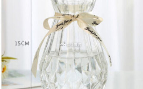 如有极速版15-5 到手0.01创意花瓶玻璃透明水养客厅摆